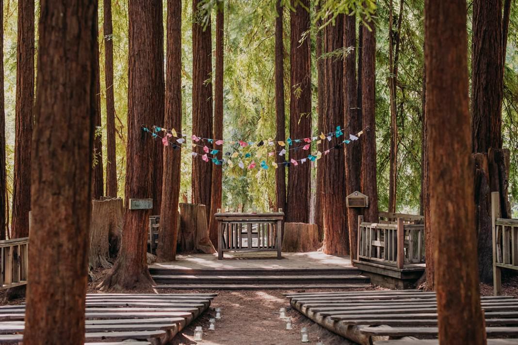 Rachel Tim S Wedding Boulder Creek Ca Helena And