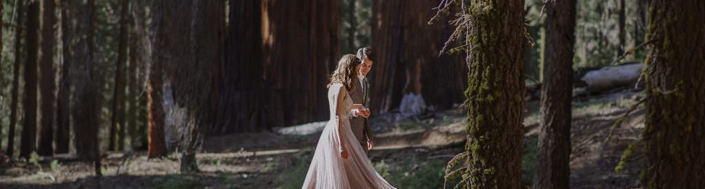 Sequoia National Park Bay Area Wedding Photographers Archives Helena And Lau